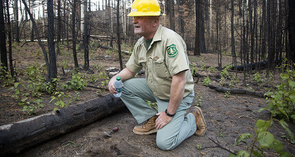 In Utah, major forest fire fuels push for state, not federal control