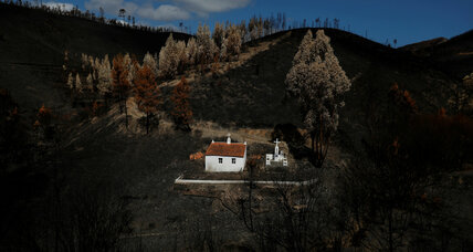 Burned landscapes turn Portugal toward forest management solutions