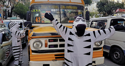 Meanwhile... in La Paz, Bolivia, zebras dance among the cars