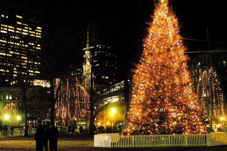 In boston a christmas tree symbolizes a cross border friendship a white spruce from nova scotia shines as a christmas tree on boston common in 2003 the tree is an annual tradition of goodwill from the citizens of nova sciox Images
