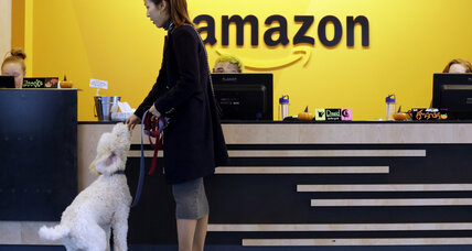 They didn't make Amazon's final cut, but these cities still hope to welcome big business
