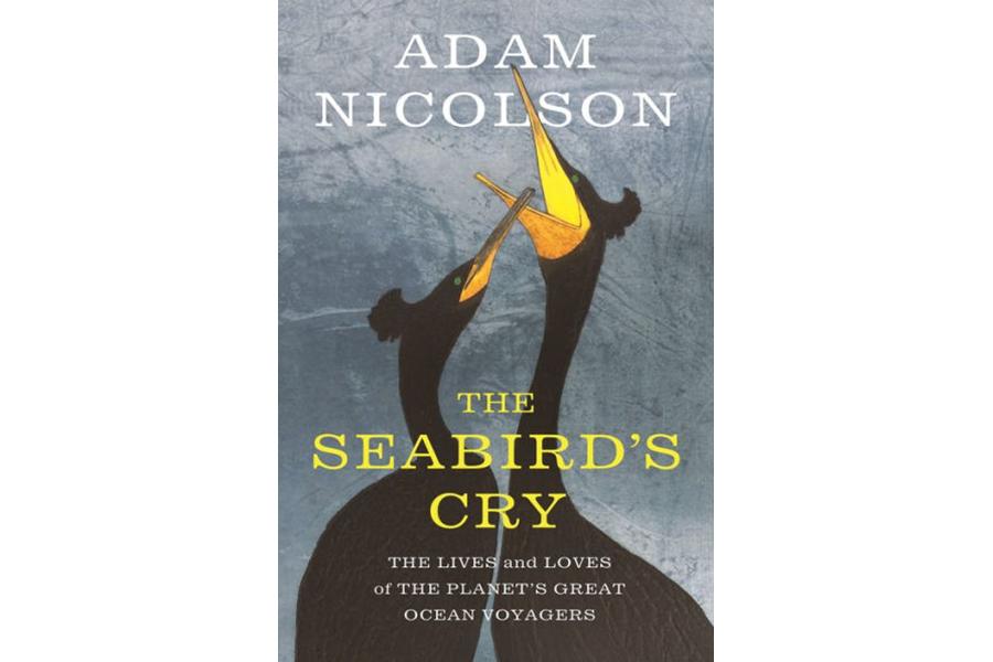 Seabird, Paperback
