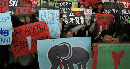 Hong Kong commits to ban ivory trading by 2021
