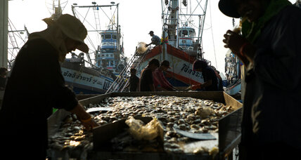 New online tool helps seafood companies fight slavery