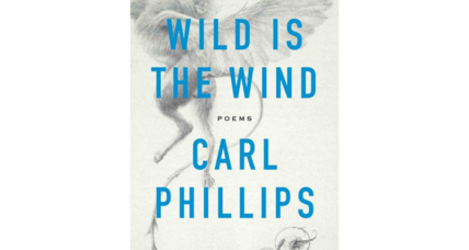 'Wild is the Wind' explores those things made all the more beautiful because they can't last