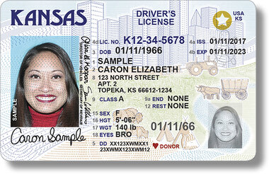 what does iss mean on pa drivers license