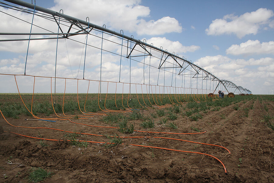 Amid Drought In Texas Panhandle Farmers Scratch Crops From Dust
