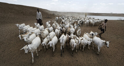 New app helps Kenyan herders cut drought risks