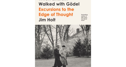 'When Einstein Walked with Gödel' is science writing at its best