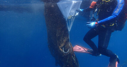Divers help to remove abandoned, destructive 'ghost' nets