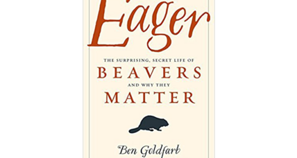 'Eager' is a passionate, captivating love letter to the beaver