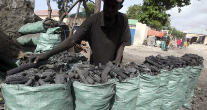 Iran and UAE complicit in illegal charcoal trade with Somali militants