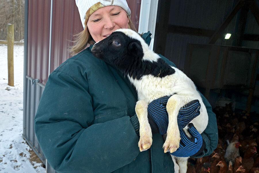 For battle-weary veterans, farming offers a fresh start