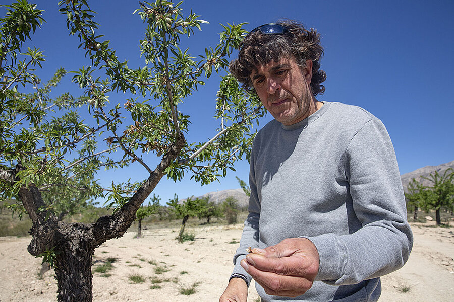 As southern Spain dries up, its farmers get inventive