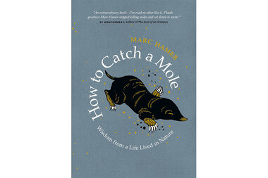 How To Catch A Mole Review A Memoir With A Lifetime S