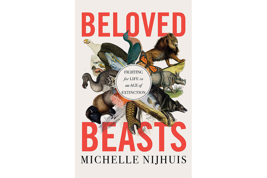Extinction isn't inevitable. 'Beloved Beasts' explains why.