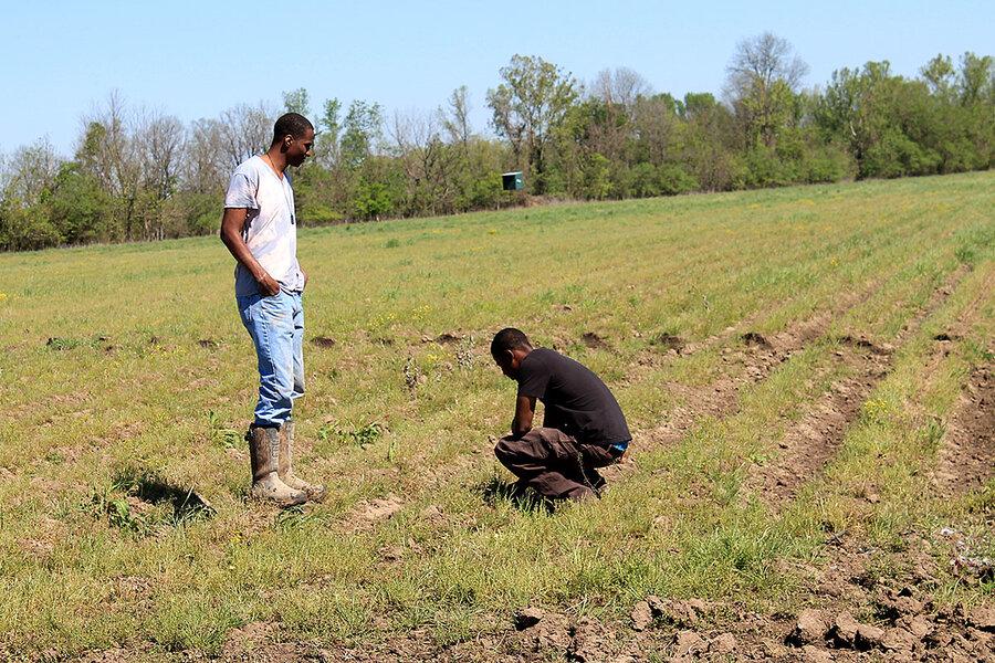 www.csmonitor.com: Biden aid for Black farmers: The view from one Louisiana farm