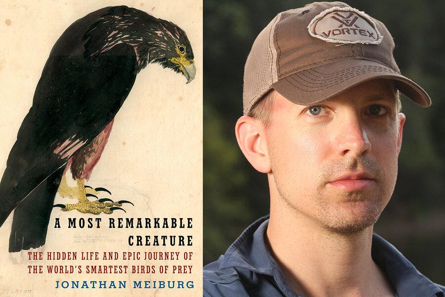 Raptor rapture: A Q&A with Jonathan Meiburg