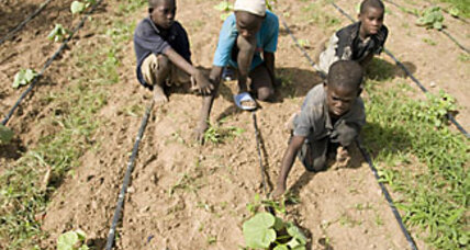 New irrigation project a boon for Senegalese farmers