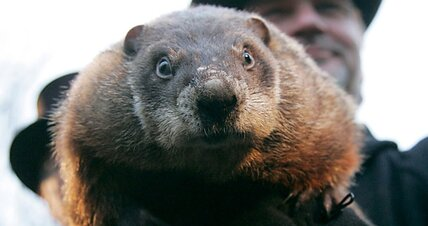 Is Punxsutawney Phil responding to global warming?