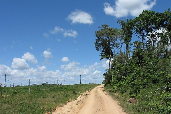 A nafta for carbon trading csmonitor a road near tailandia brazil separates the standing amazon rainforest and a patch that has been deforested brazil is the worlds fourth biggest emitter of sciox Images