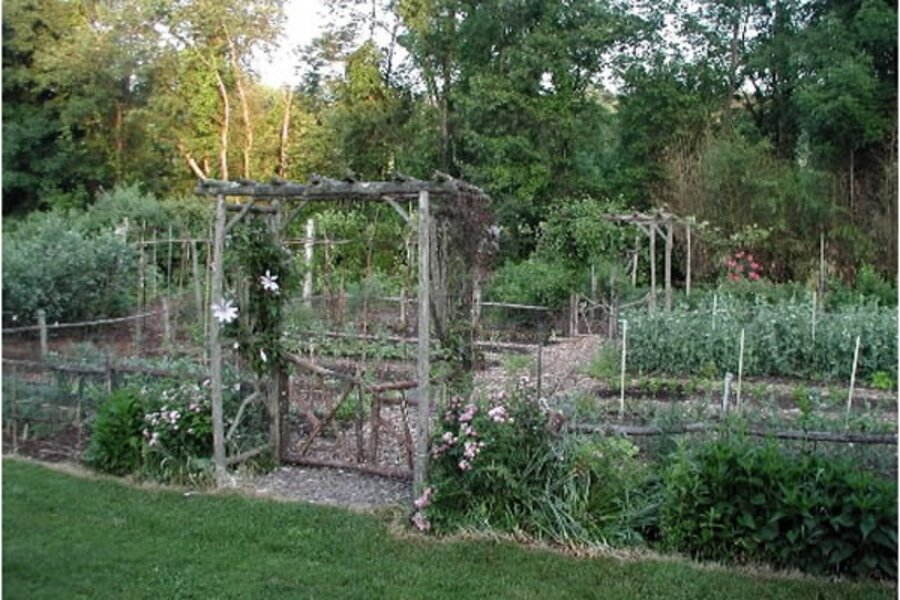 Vegetable Gardens Can Please Eye As Well As Palate