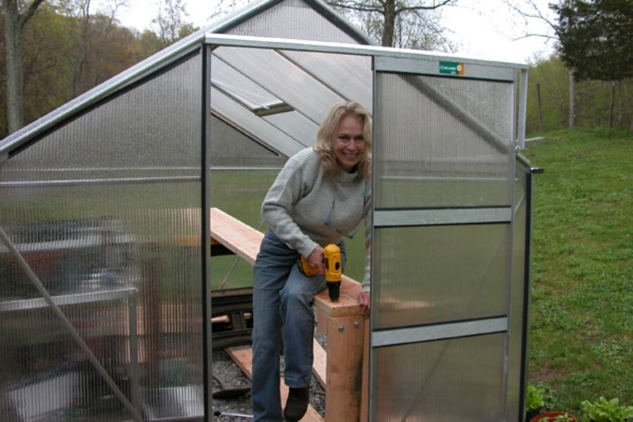 Pots Or Raised Beds The Conundrums Facing A Novice Greenhouse Gardener