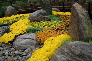 A Japanese Rock Garden At The New York Botanical Garden Mixes  Autumn Colored Blooms With Interesting Stone Placement And Shapes  Suggesting Mountains, ...