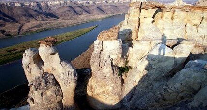 Plan to restore the Upper Missouri River could boost fish and cottonwood trees
