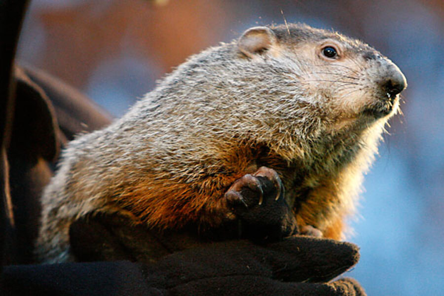 Groundhog Day: Five Facts About Punxsutawney Phil