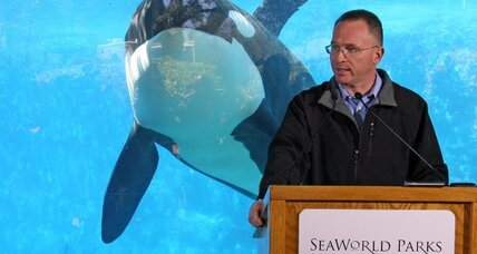 SeaWorld defends use of 'Tilikum' and other killer whales