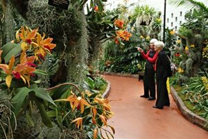 Visitors Enjoying The Orchid Show At The Missouri Botanical Garden, Which  Remains On View Through March 28.