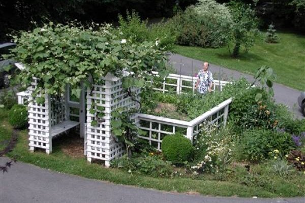 10 steps to success with your first vegetable garden CSMonitor – Steps to Planting a Garden