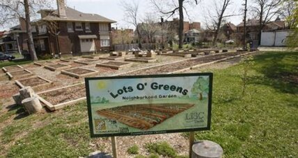 Detroit leads the way in urban farming
