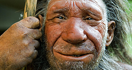 Study suggests humans mated with Neanderthals