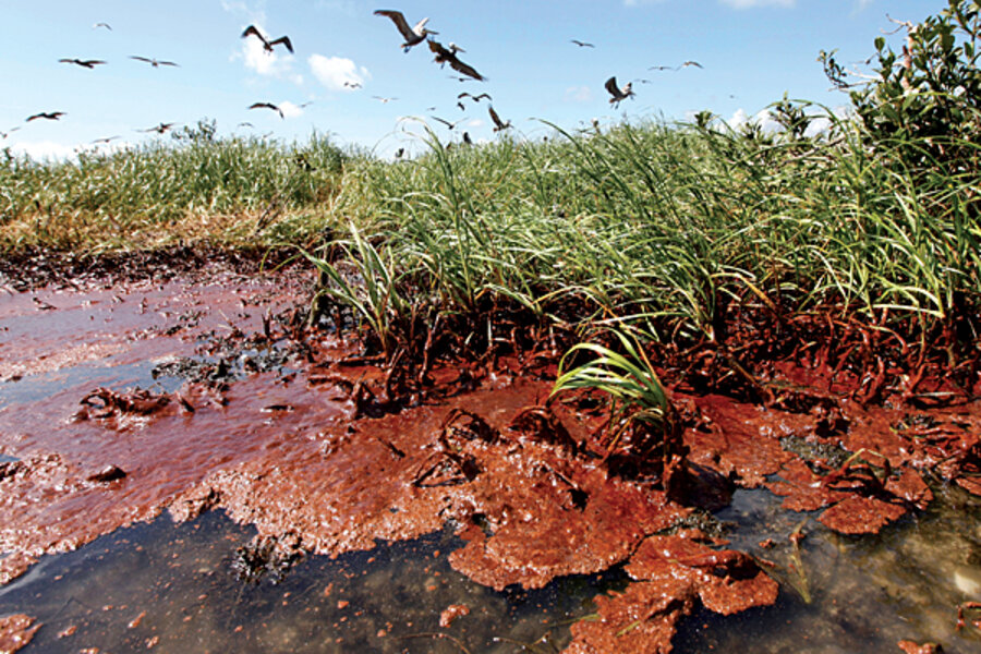 Six lessons from the BP oil spill - CSMonitor com