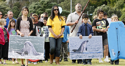 Dolphin funeral draws hundreds of humans, but no other dolphins