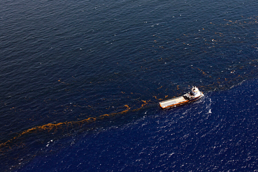 an analysis and opinion on the bp oil spill crisis in the gulf coast