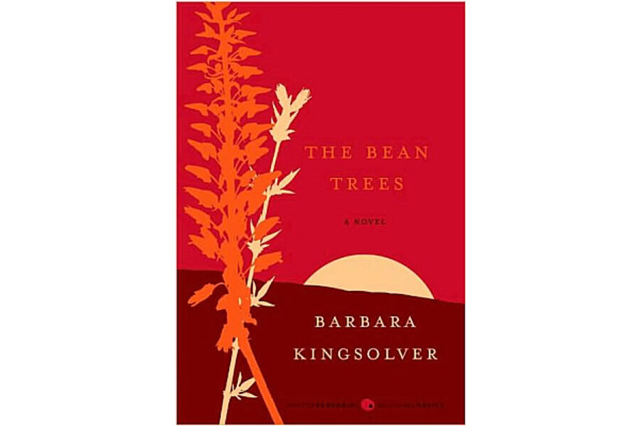 the bean tree essay
