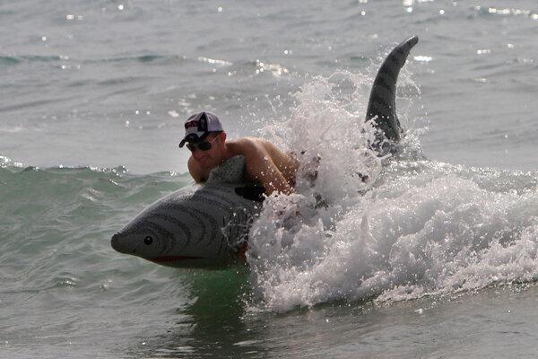 Shark Sighting In Westport Mass Bonus For Shark Week