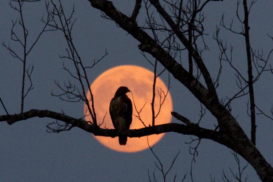 Harvest moon on fall equinox won't be seen again until 2029 - CSMonitor.com
