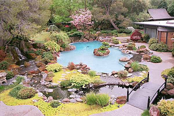 Zen and the art of economy repair for Koi pond swimming pool