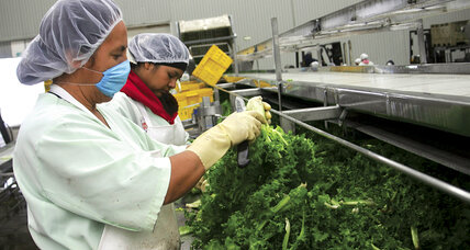 Food safety: From Mexican farm, to Costco, to your plate