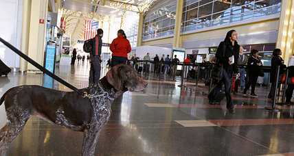Should TSA let airport passenger screening go to the dogs?