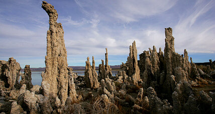 Arsenic microbe in Mono Lake may reshape hunt for extraterrestrial life