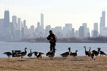 csmarchives/2011/02/0203-Chicago.jpg