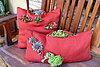 Great gardening project: Create a succulent pillow