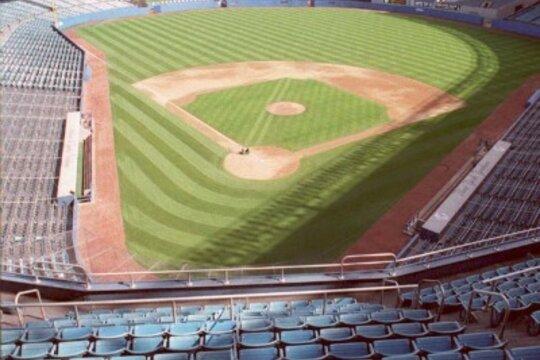 1994 in baseball