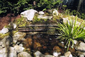 Here Are Three Examples Of Not So Big Water Features That Can Make A Big  Impact In Your Yard But Carry A Small Price Tag.