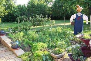 Rule 1 Of Vegetable Gardening Success: Location, Location, Location. This Small  Kitchen Garden Is Near The House, Which Makes Care And Harvesting A Breeze.